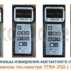 Единицы измерения оцениваемых значений постоянного и переменного магнитного поля тесламетром ТПМ-250 с поверкой