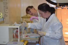 Практика в химической лаборатории - основа результативного обучения
